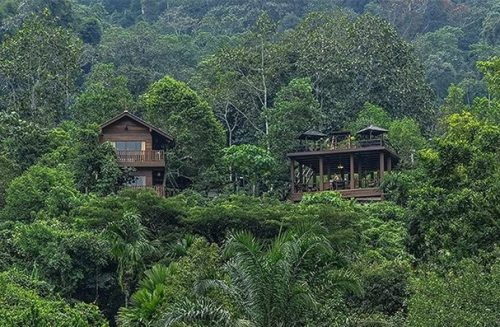 Best Malaysia Vacation Spots You Must Visit, Templar Park Rainforest Retreat