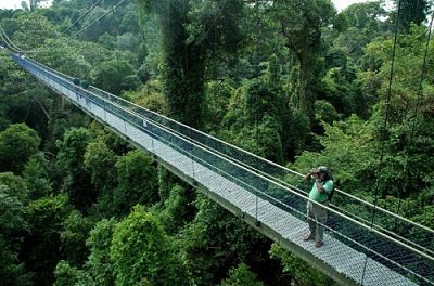 Bukit Timah Singapore Top Rated Tourist Attractions