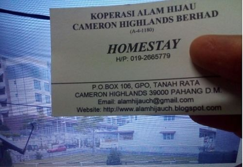 Homestay Cameron Highlands Ultimate Tips