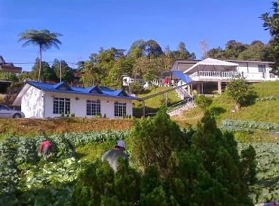 Melati Homestay - Best Homestay In Cameron Highlands