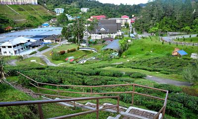 Things To Do In Cameron Highlands Mardi Agrotechnology Park
