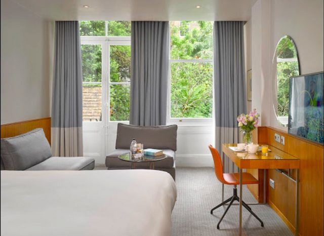 Top 15 dog-friendly hotels in London Global Grasshopper