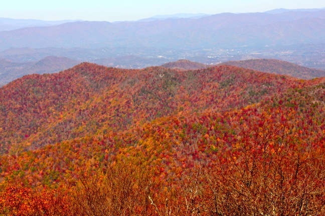 The View From Atop Brasstown Bald