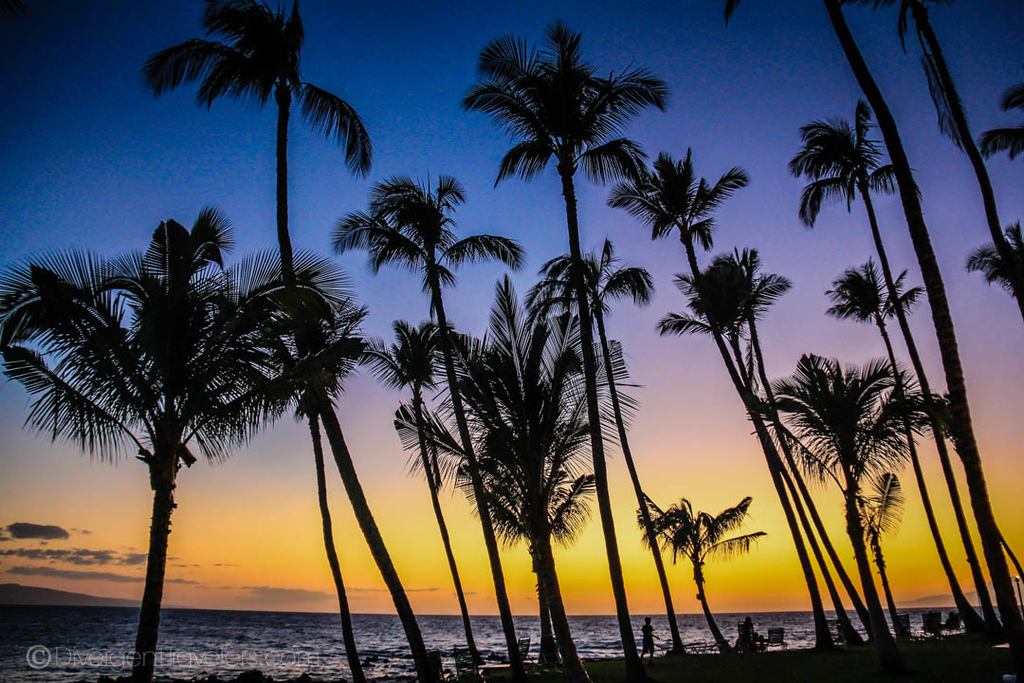 things to do in Honolulu - Oahu Hawaii - Lina Stock