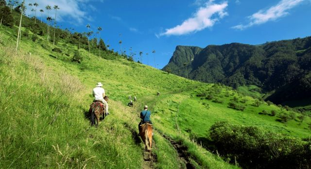 Horse riding in the Coffee Region