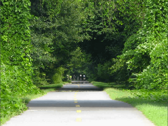 Day Trips from Atlanta: Biking the Silver Comet Trail